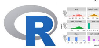 R Programming for Data Science for Absolute Beginners [2020]